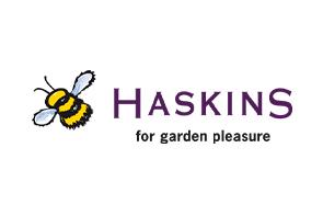Haskins logo